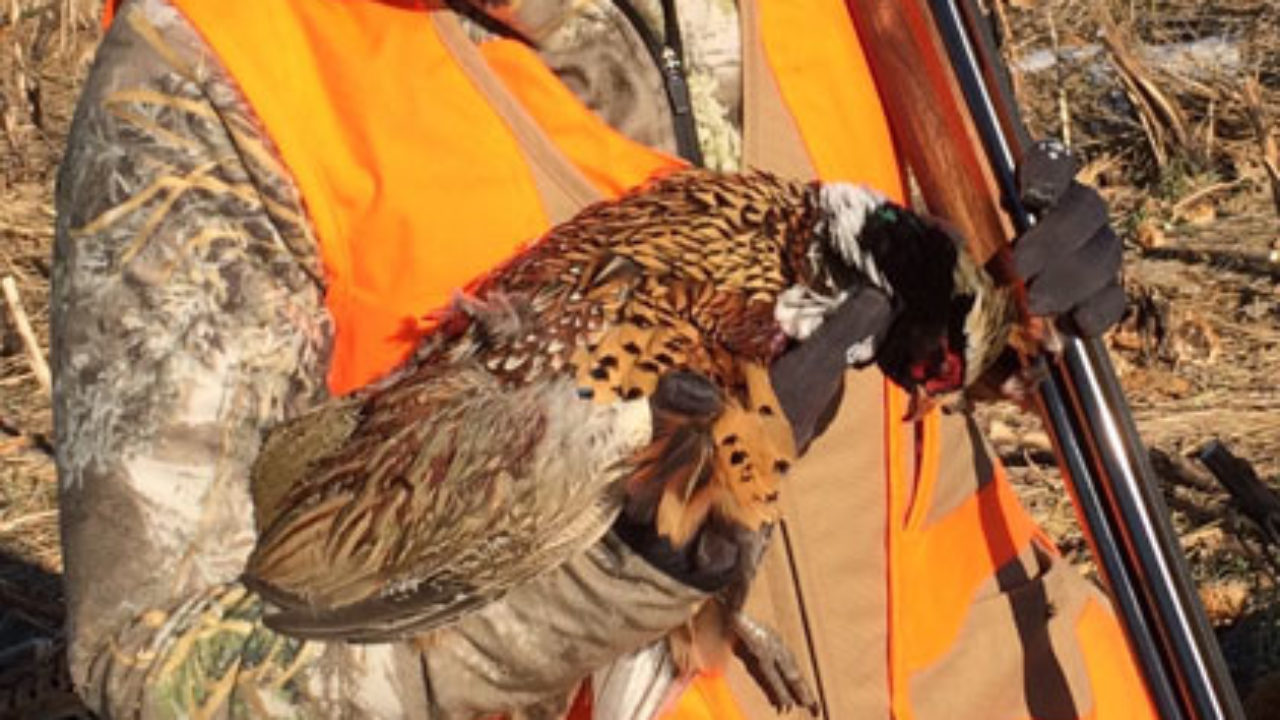 NRA Family: Photos from Kansas Governor's Ringneck Classic